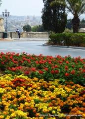 Malta Colors
