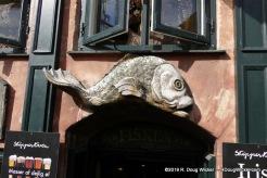 Something fishy in Copehagen