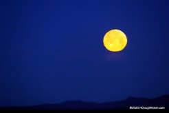April 7 Super Moon near dawn