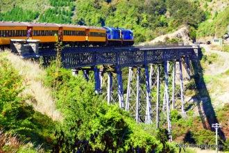 Dunedin Railways train
